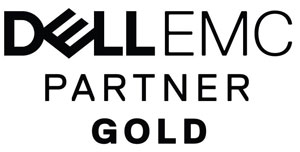 Logo Dell Partner Gold